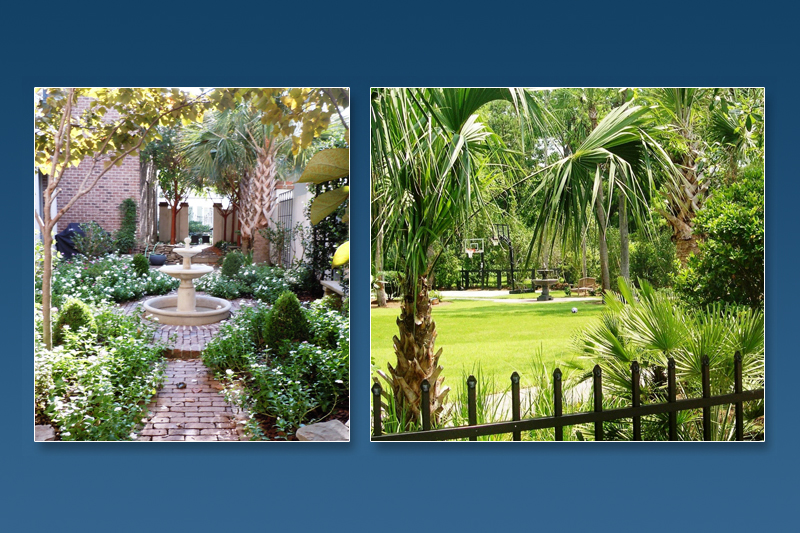 Coastal South Carolina Landscape Design: D.I.G Landscapes