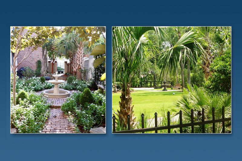 3-DIG-charleston-landscape-design